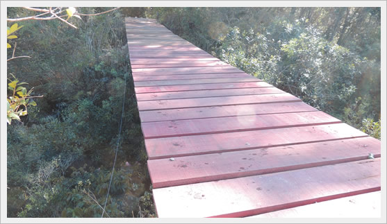 ponte do bode